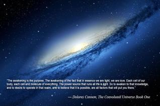 Awakening We Are Light