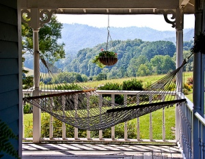 Hammock in the Hills