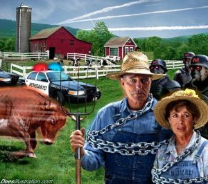 farmers markets tyrannized