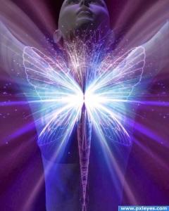 embodiment-of-light