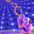 reprogram your DNA