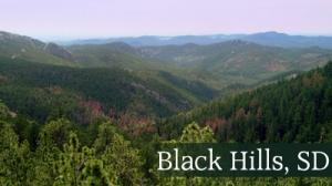 Black-hills(1)